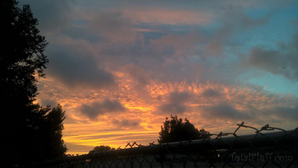 stunning sunrise landscape at dawn